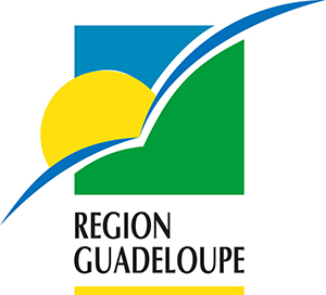 Politique nerg tique r gion guadeloupe guadeloupe energie for Chambre de commerce guadeloupe