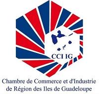 logo CCI-IG